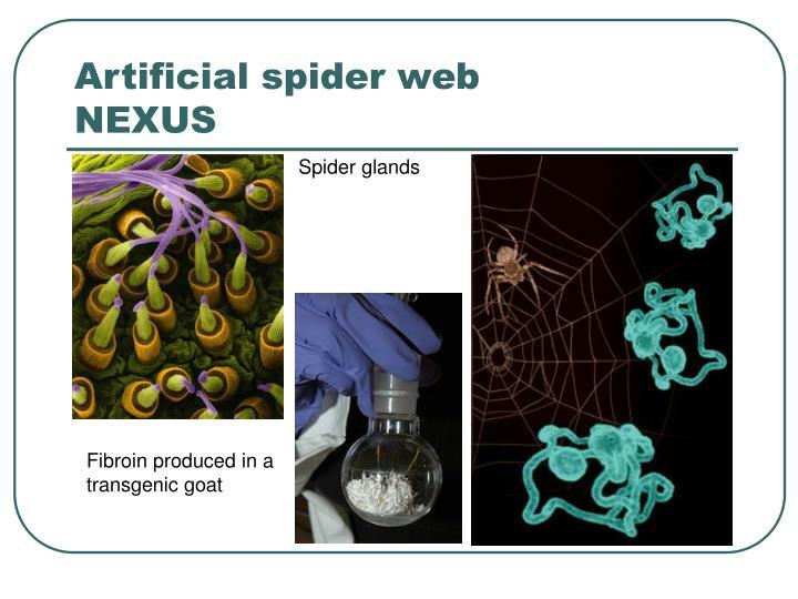 Artificial spider web