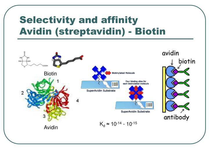 Selectivity and affinity