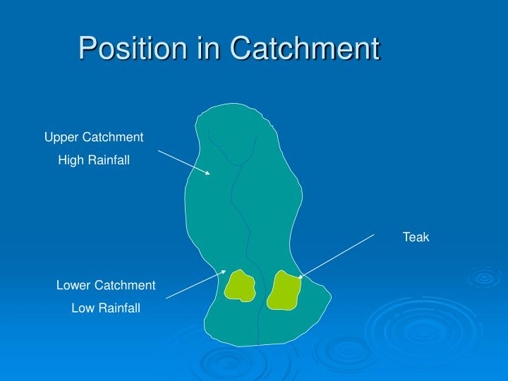 Position in Catchment