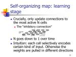 self organizing map learning stage1