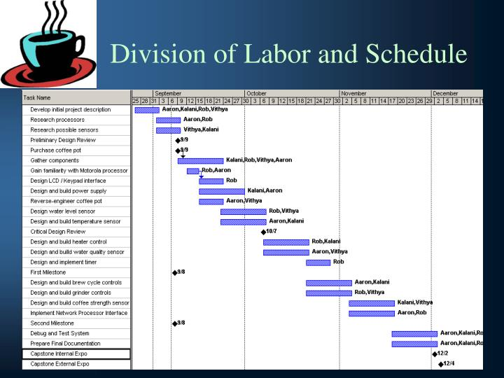 Division of Labor and Schedule