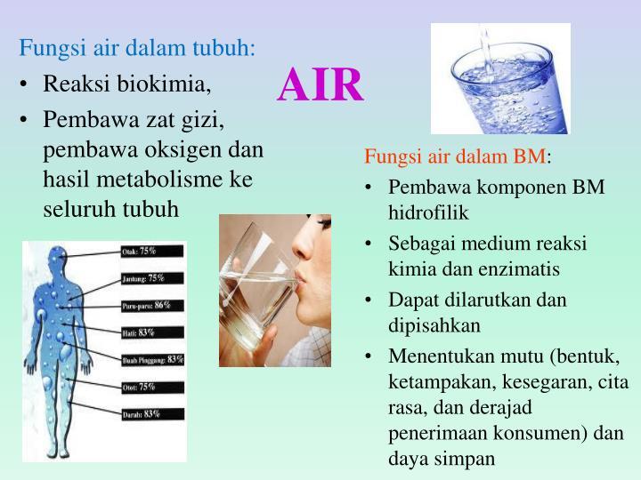Fungsi air dalam tubuh:
