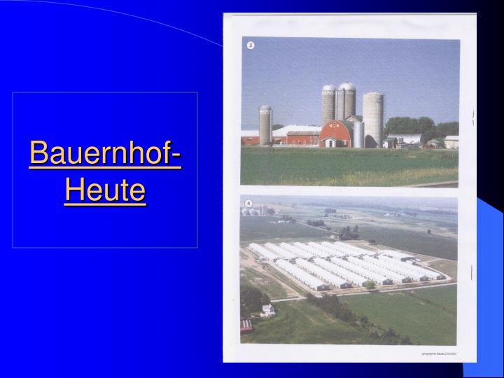 Bauernhof-Heute