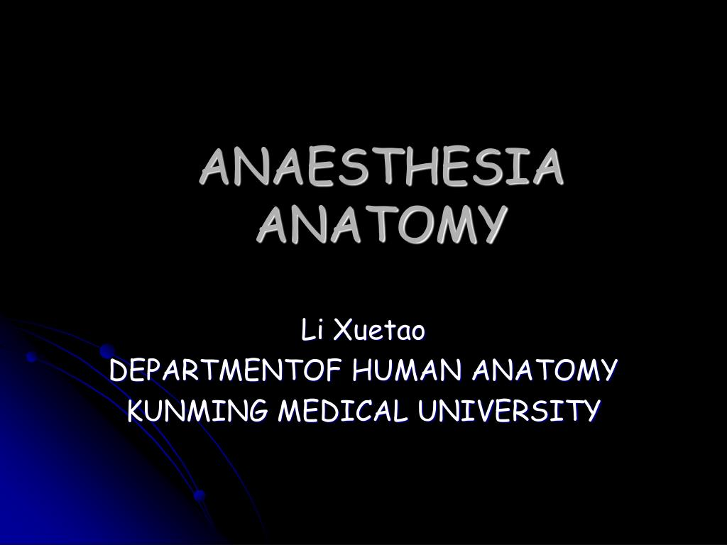 Ppt Anaesthesia Anatomy Powerpoint Presentation Id4726344