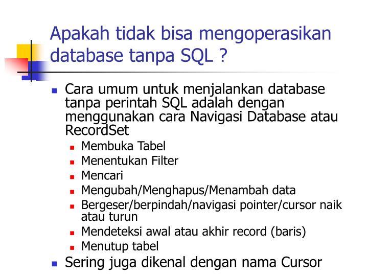 Apakah tidak bisa mengoperasikan database tanpa SQL ?