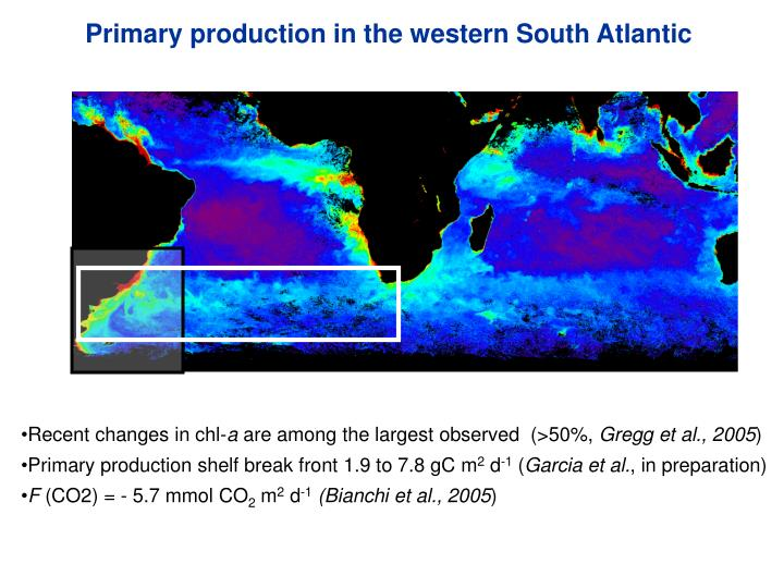 Primary production in the western South Atlantic