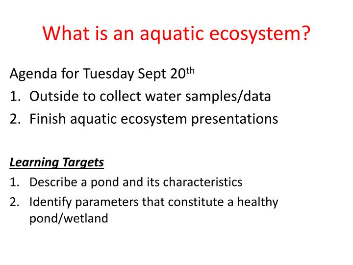Ppt  What Is An Aquatic Ecosystem Powerpoint Presentation  Id