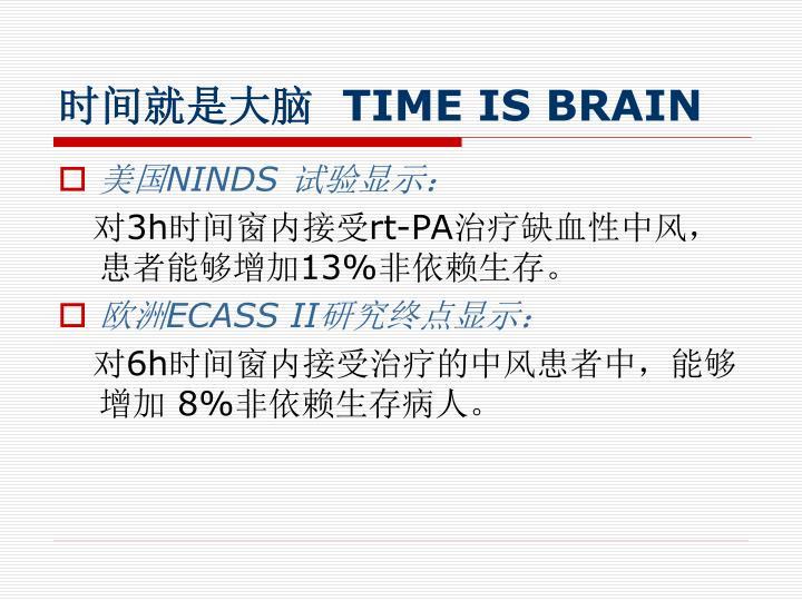 时间就是大脑