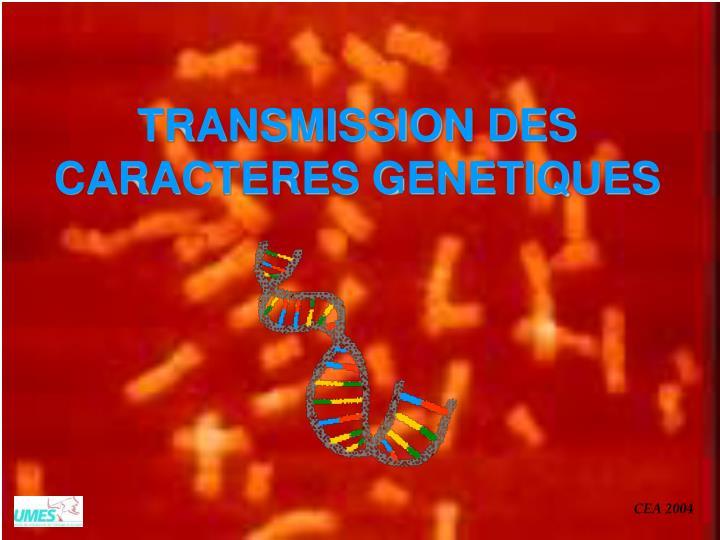 TRANSMISSION DES CARACTERES GENETIQUES