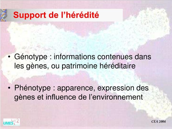Support de l'hérédité