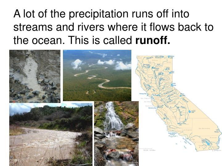 A lot of the precipitation runs off into streams and rivers where it flows back to the ocean. This is called