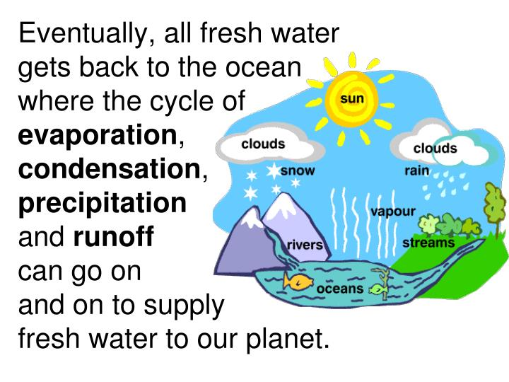 Eventually, all fresh water gets back to the ocean where the cycle of