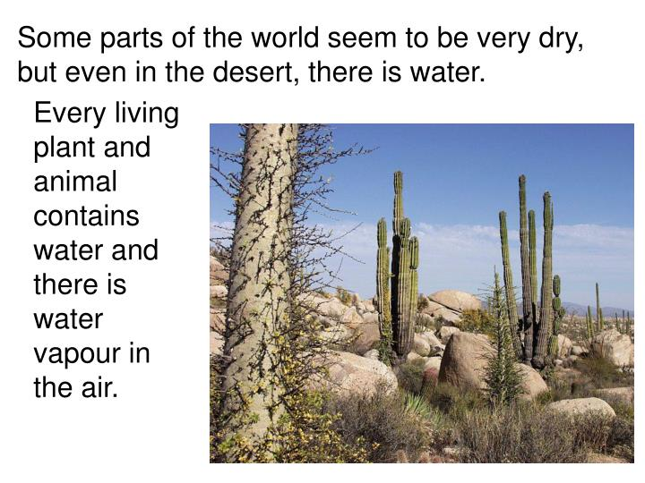Some parts of the world seem to be very dry,  but even in the desert, there is water.
