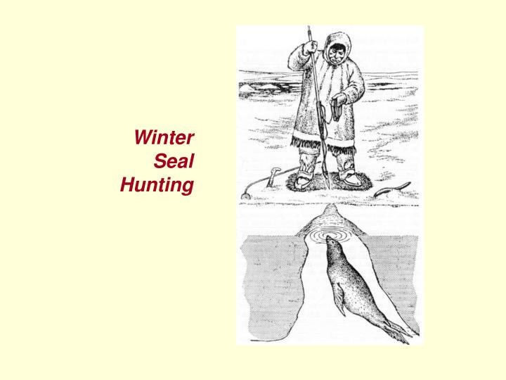 Winter Seal Hunting