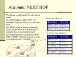 attribute next hop