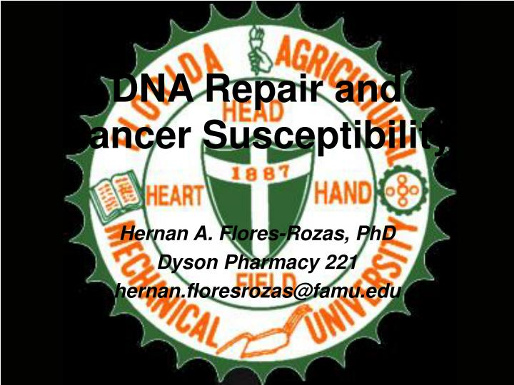 dna repair and cancer susceptibility n.