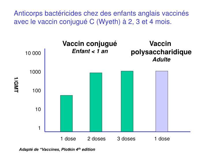 Anticorps bactéricides chez des enfants anglais vaccinés
