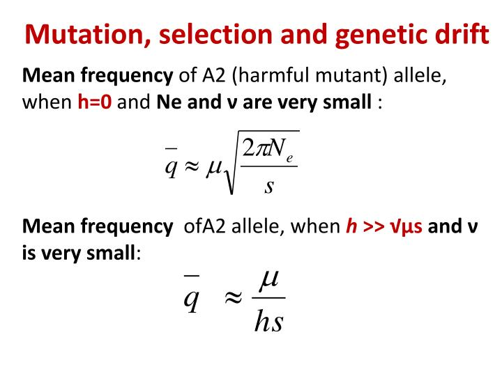 Mutation, selection and genetic drift