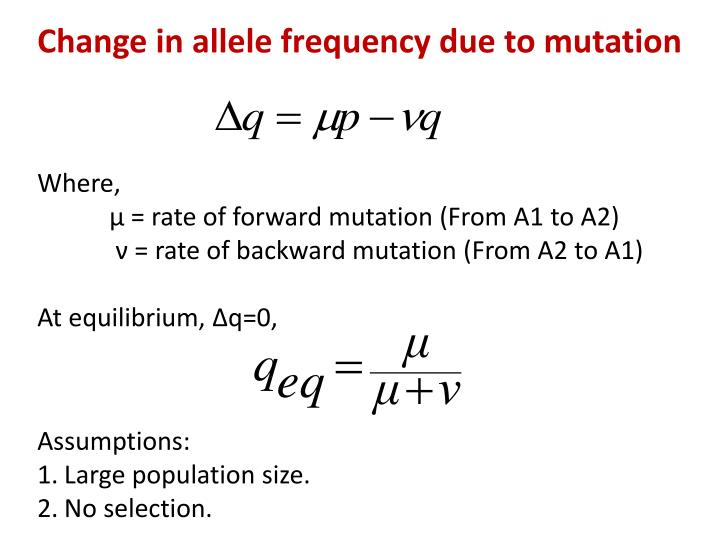 Change in allele frequency due to mutation