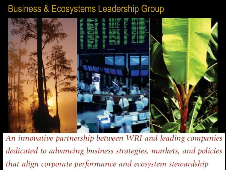 Business & Ecosystems Leadership Group
