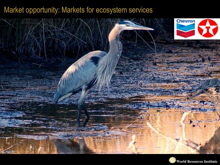Market opportunity: Markets for ecosystem services