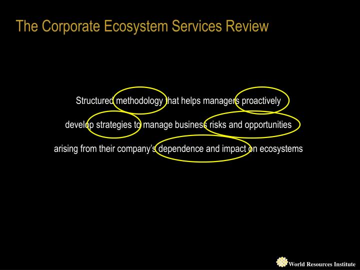 The Corporate Ecosystem Services Review