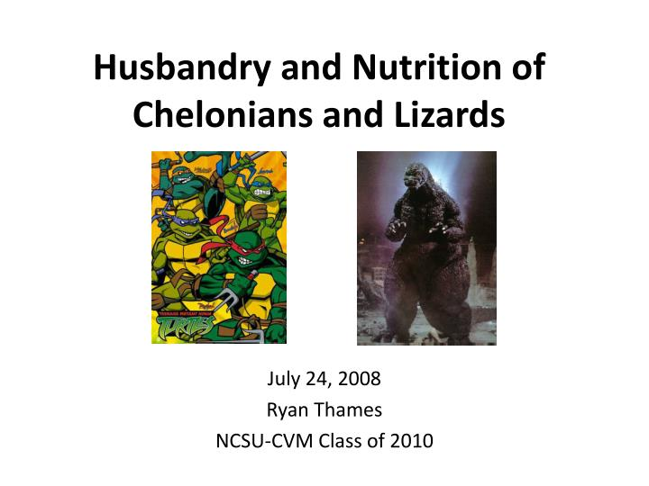 husbandry and nutrition of chelonians and lizards n.