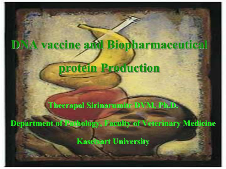 dna vaccine and biopharmaceutical protein production n.