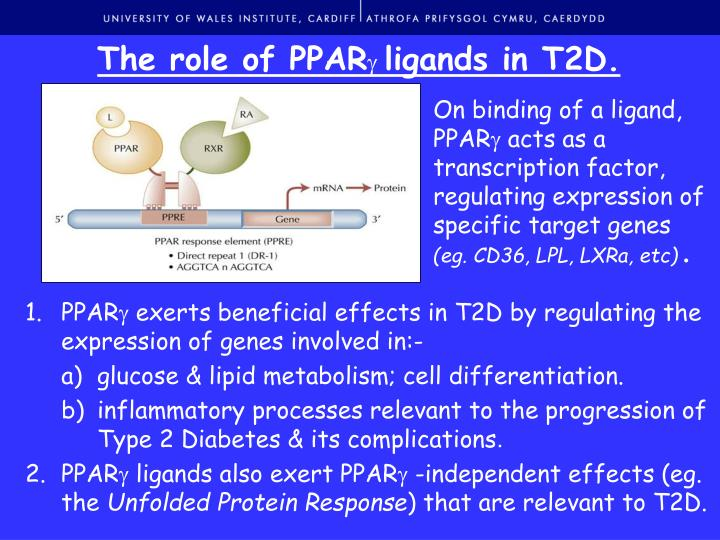 The role of PPAR