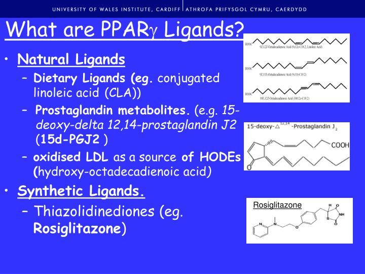 What are ppar ligands