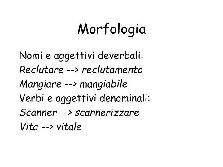 Morfologia1