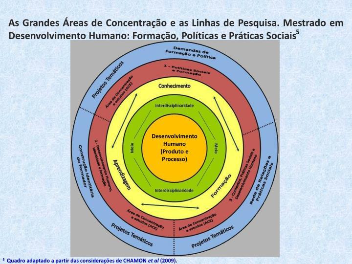 As Grandes Áreas de Concentração e as Linhas de Pesquisa. Mestrado em Desenvolvimento Humano: Formação, Políticas e Práticas Sociais