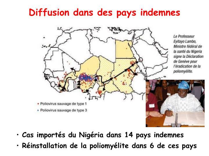 Diffusion dans des pays indemnes