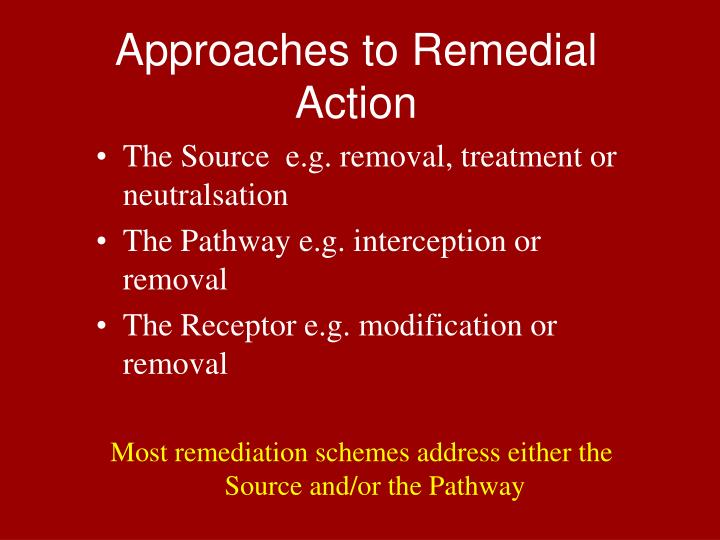 Approaches to Remedial Action
