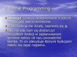 extreme programming10