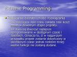 extreme programming11