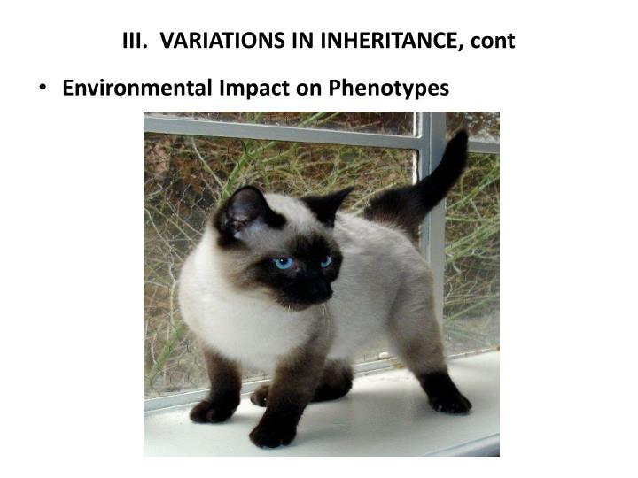 III.  VARIATIONS IN INHERITANCE, cont