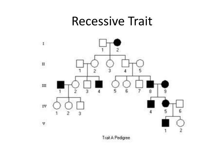 Recessive Trait