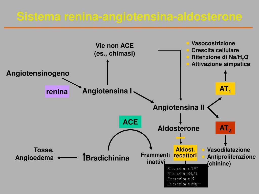PPT - Ascite: Diagnosi e Terapia PowerPoint Presentation..
