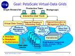 goal petascale virtual data grids