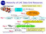 hierarchy of lhc data grid resources