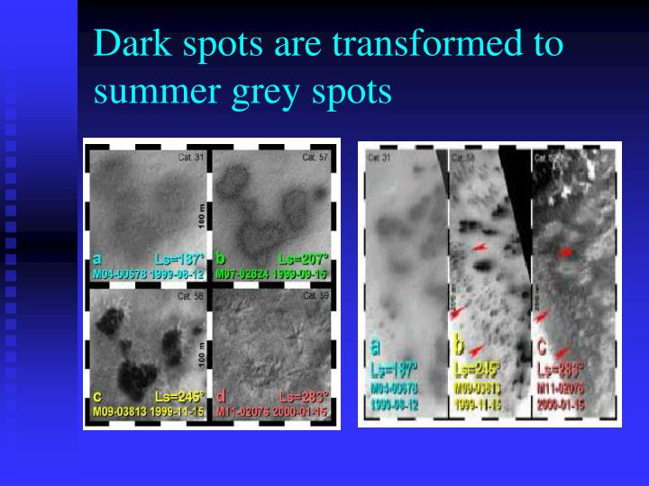 Dark spots are transformed to summer grey spots