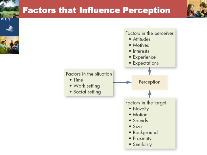 Factors that Influence Perception