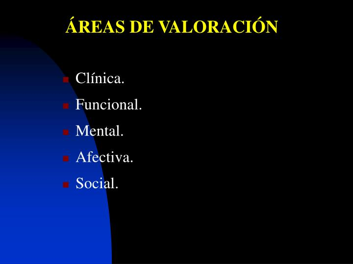 ÁREAS DE VALORACIÓN