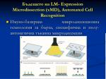 lm expression microdissection xmd automated cell recognition