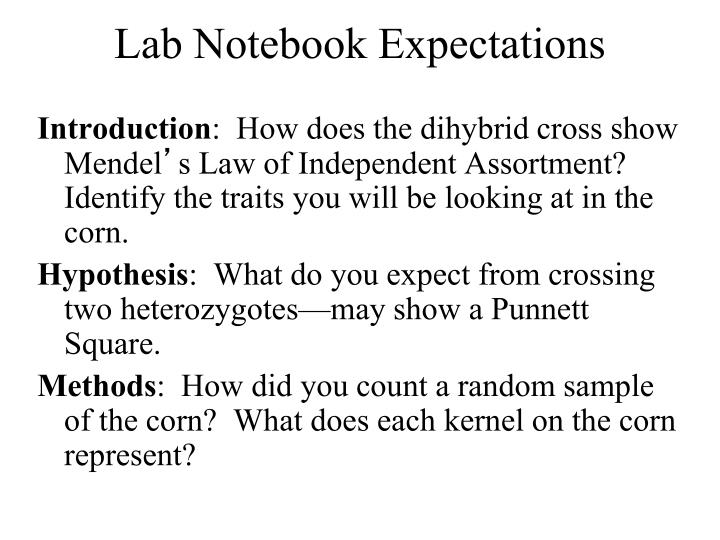 Lab Notebook Expectations