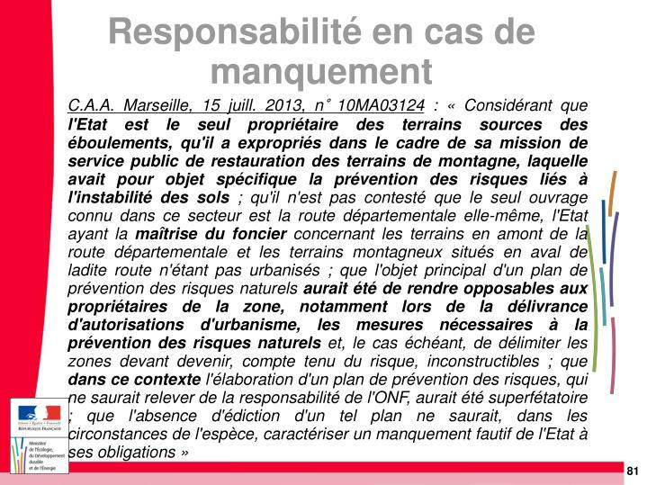 C.A.A. Marseille, 15 juill. 2013, n° 10MA03124