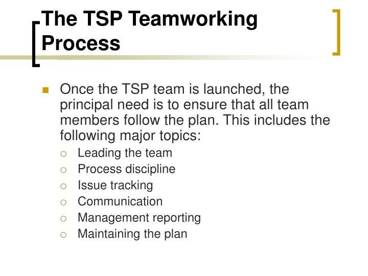 The TSP Teamworking Process
