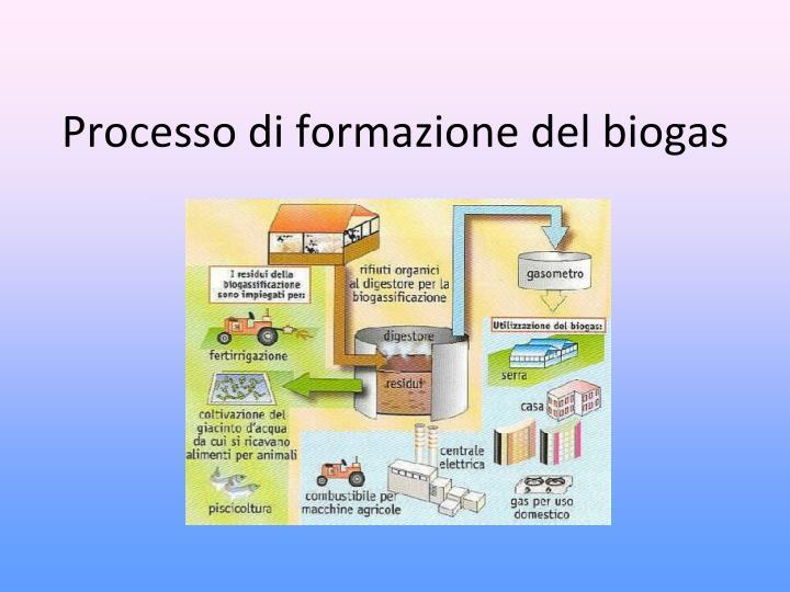Processo di formazione del biogas