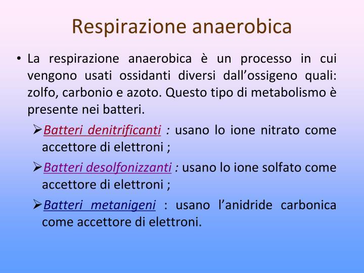 Respirazione anaerobica